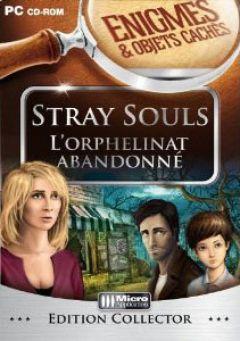 Jaquette de Enigmes & Objets Cachés : Stray Souls PC