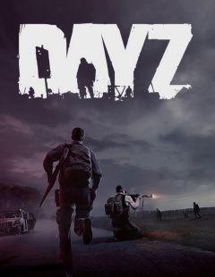 Jaquette de DayZ PC