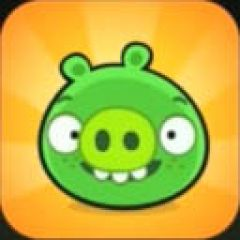 Jaquette de Bad Piggies iPad