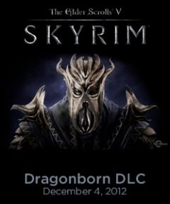 Jaquette de The Elder Scrolls V : Skyrim - Dragonborn Xbox 360