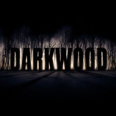 Jaquette de Darkwood PC