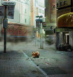 Jaquette de Tokyo Jungle PS Vita