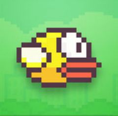 Jaquette de Flappy Bird iPhone, iPod Touch