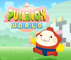 Jaquette de Pullblox World Wii U