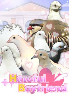 Jaquette de Hatoful Boyfriend PC