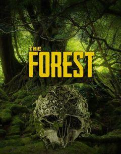Jaquette de The Forest PS4