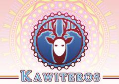 Jaquette de Kawiteros PC