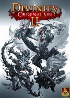 Jaquette de Divinity : Original Sin II PC