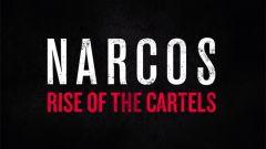 Jaquette de Narcos : Rise of the Cartels PS4