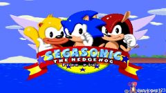 Jaquette de SegaSonic The Hedgehog Arcade