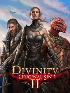 Jaquette de Divinity : Original Sin 2 - Definitive Edition PC
