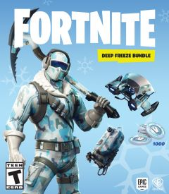 Jaquette de Fortnite Pack Froid éternel PS4