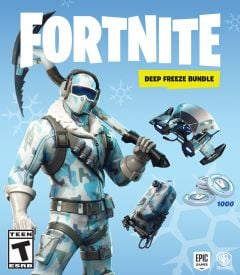Jaquette de Fortnite Pack Froid éternel Xbox One
