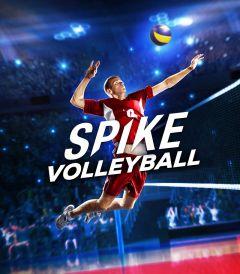 Jaquette de Spike Volleyball PC