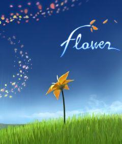 Jaquette de Flower PC