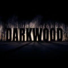 Jaquette de Darkwood Nintendo Switch