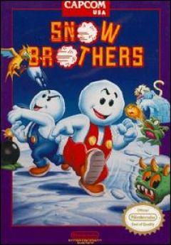 Jaquette de Snow Brothers NES