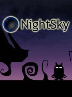 Jaquette de NightSky PC