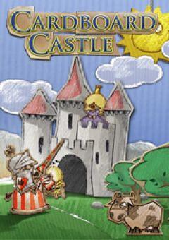 Jaquette de CardBoard Castle iPad