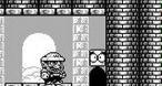 Image Super Mario Land 3 : Wario Land