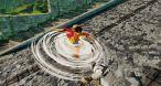 Image One Piece : World Seeker