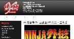 Image Ninja Gaiden Trilogy (titre provisoire)