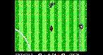 Image MicroProse Soccer