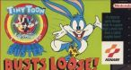 Image Tiny Toon Adventures : Buster Busts Loose !