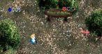 Image Zelda's Adventure