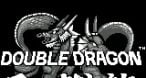 Image Double Dragon