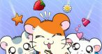 Image Hamtaro : petits hamsters, grandes aventures