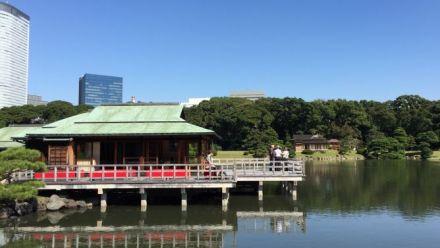 vidéo : Tokyo Hamarikyu Gardens - Le jardin Hama-Rikyû