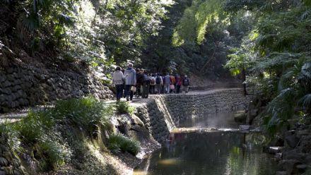 vidéo : Tokyo Street View : découvrez la Todoroki Valley