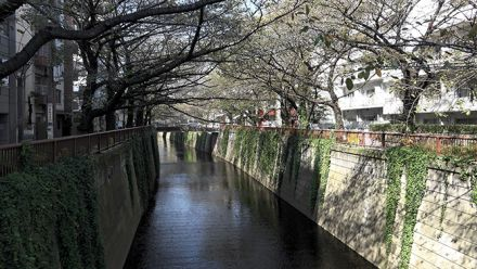 vidéo : Tokyo Street View : découvrez Nakameguro