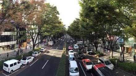 vid�o : Tokyo Street View : découvrez Omotesando