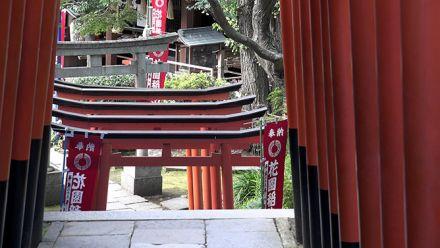 vid�o : Tokyo Street View : découvrez le parc Ueno (partie 1)