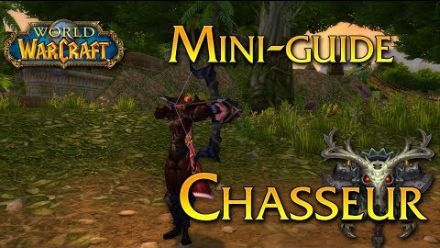 vid�o : World of Warcraft - Tuto, Le Chasseur