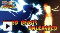 Naruto Shippuden : Ultimate Ninja Storm 3 daté en vidéo