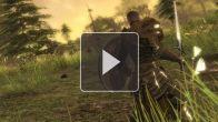 Guild Wars 2 - les Asuras