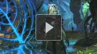 Guild Wars 2 - Les Sylvari