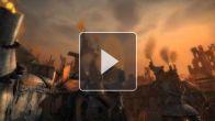 Guild Wars 2 - Les Charrs