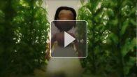 vid�o : Mama Farm - Teaser