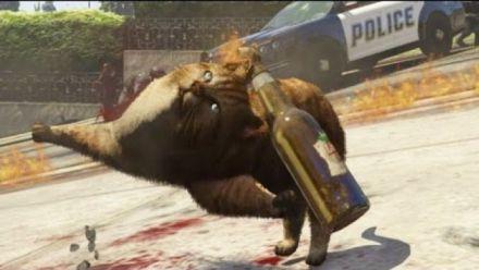 vidéo : GTA 5 PC - chat tueur
