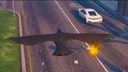 vidéo : GTA 5 PC Mods - corbeau tueur