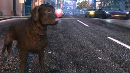 Un chien peut-il voler une voiture dans GTA V ?