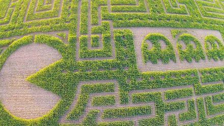 Vid�o : Pac-Man : Labyrinthe géant aux États-Unis