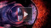 vid�o : IronSquid Teaser