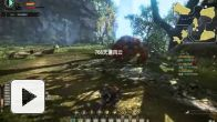 Vid�o : Monster Hunter Online : Beta 03
