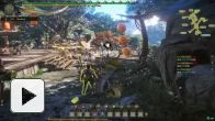 Vid�o : Monster Hunter Online : Beta 01