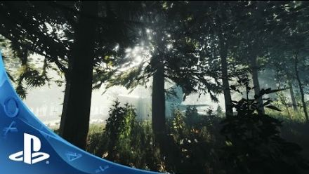Vid�o : The Forest PlayStation Experience 2014
